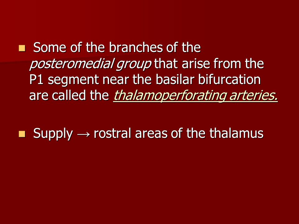 Some of the branches of the posteromedial group that arise from the P1 segment near the basilar bifurcation are called the thalamoperforating arteries.