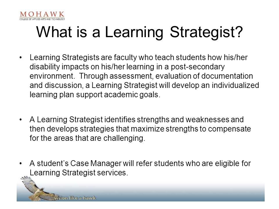 What is a Learning Strategist