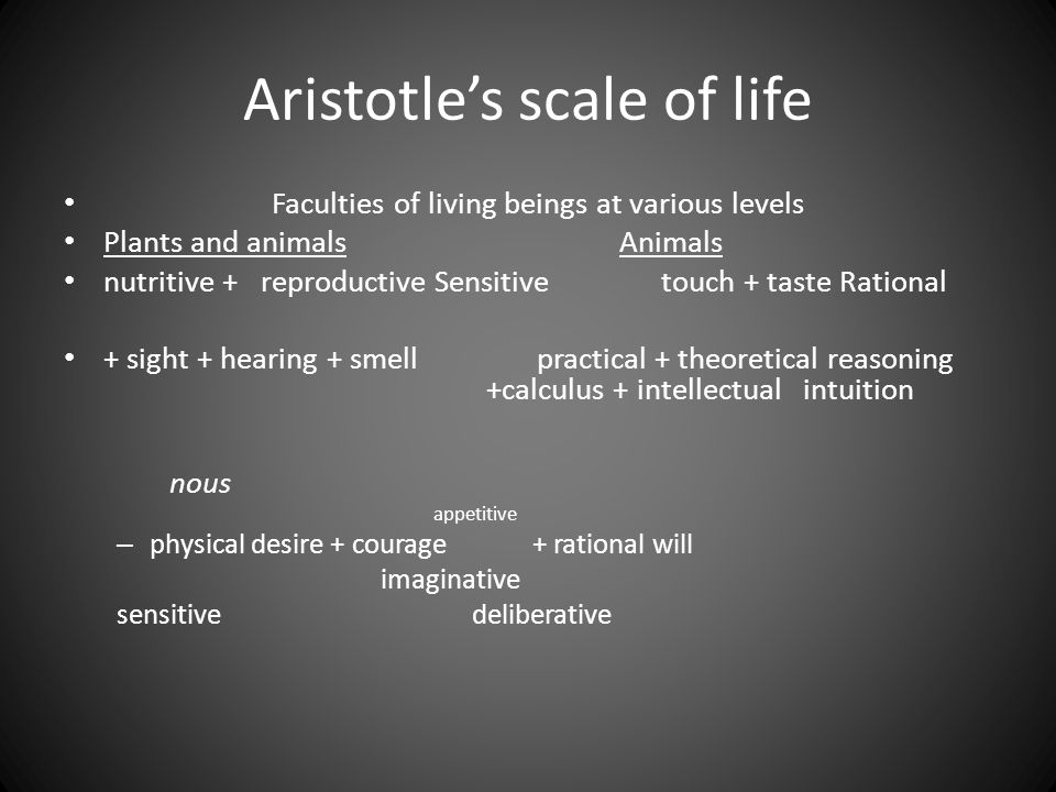 Aristotle's scale of life