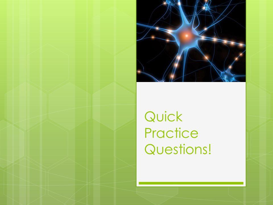 Quick Practice Questions!