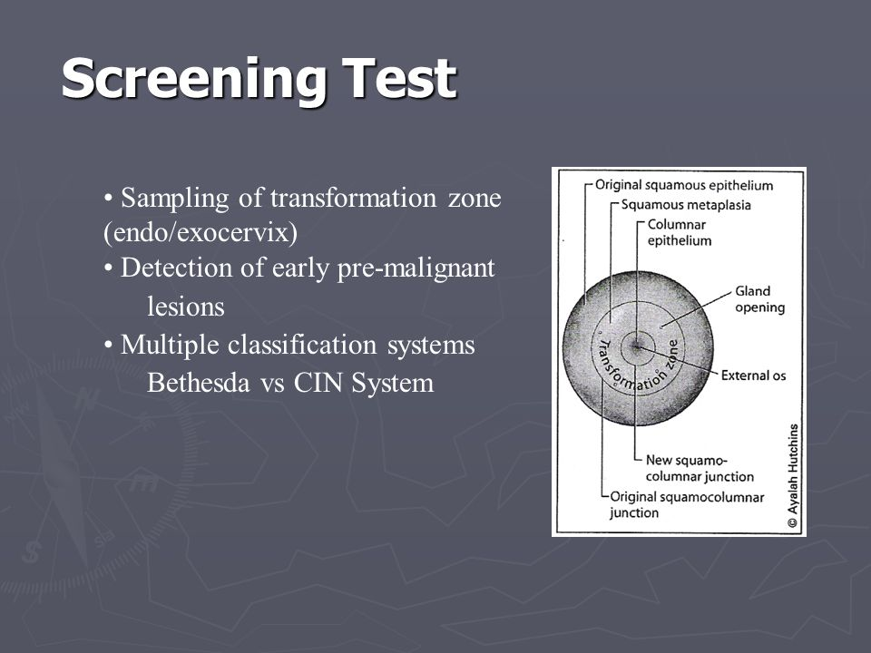 Screening Test Sampling of transformation zone (endo/exocervix)
