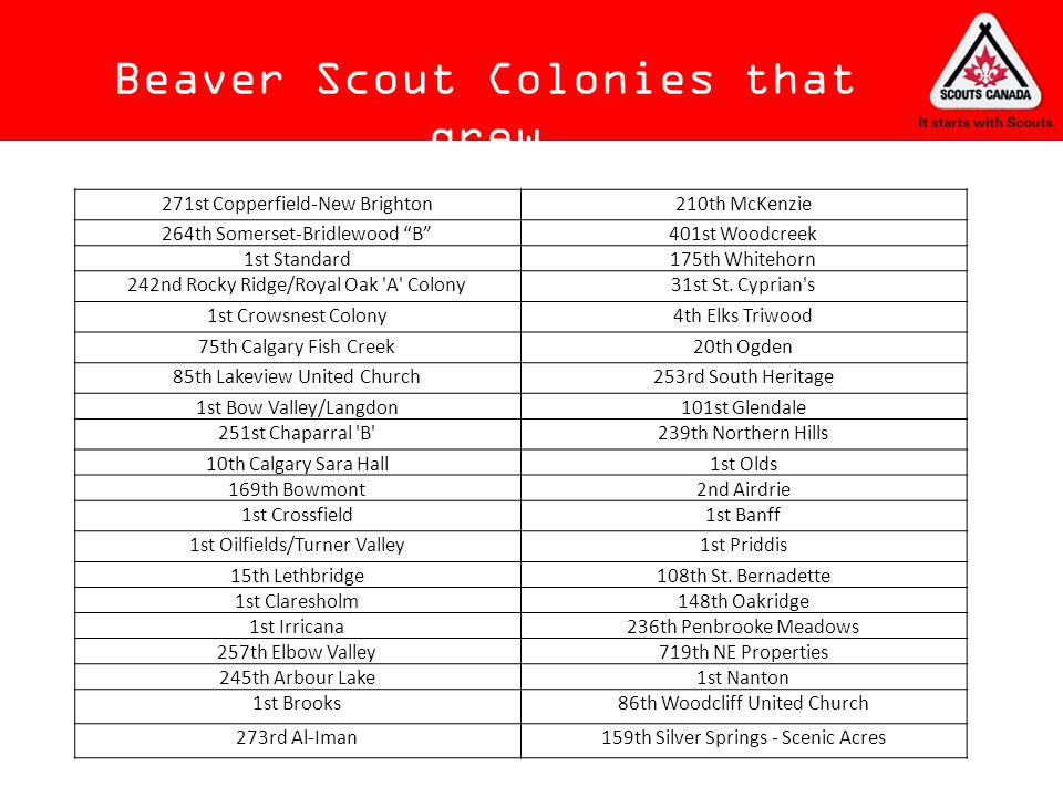 Beaver Scout Colonies that grew