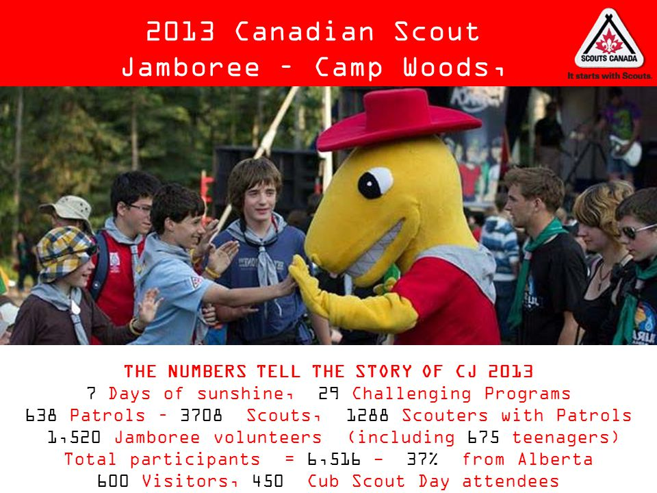 THE NUMBERS TELL THE STORY OF CJ 2013