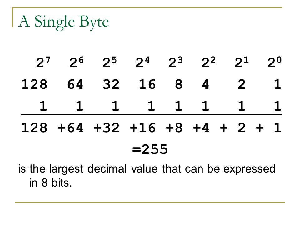 A Single Byte 27 26 25 24 23 22 21 20. 128 64 32 16 8 4 2 1. 1 1 1 1 1 1 1 1.