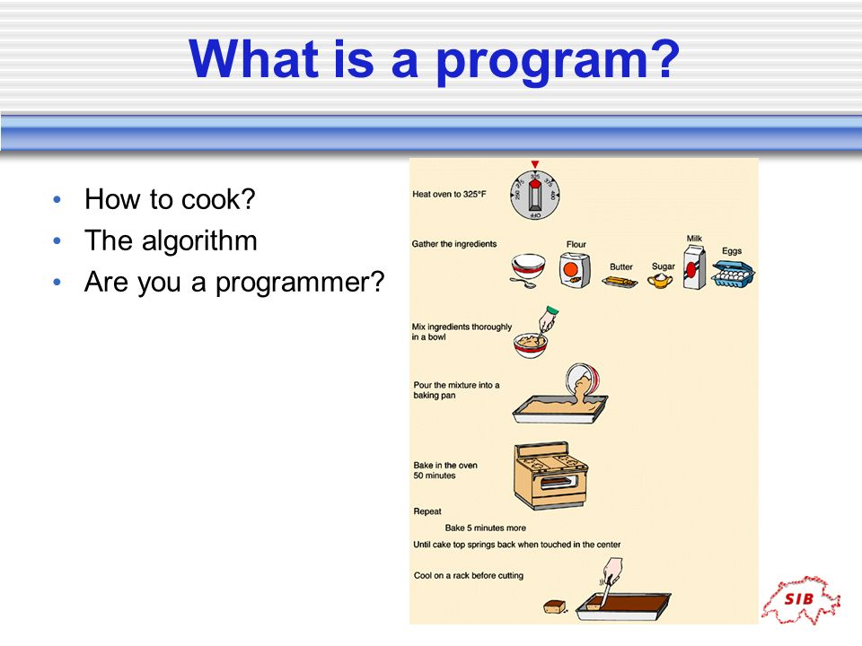 What is a program How to cook The algorithm Are you a programmer