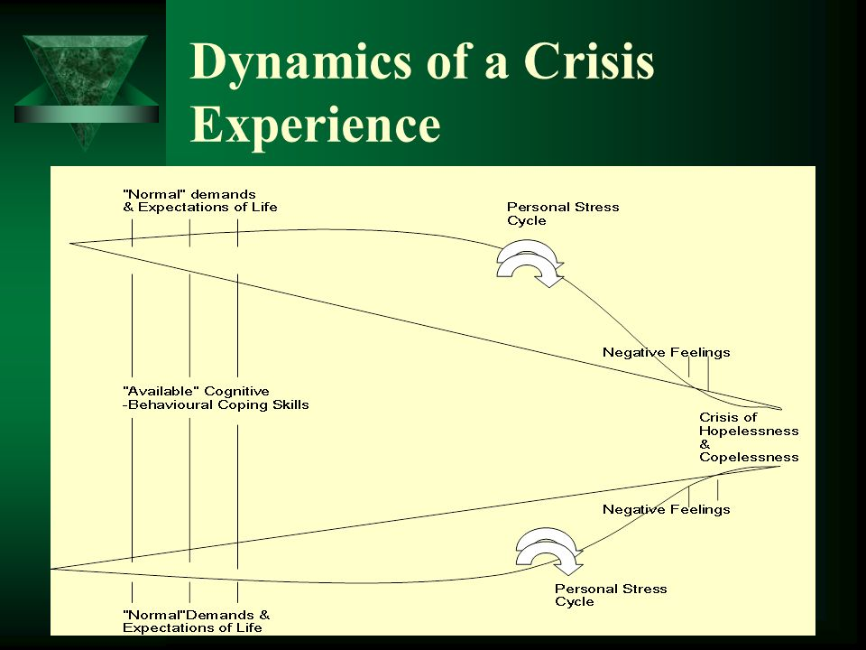 Dynamics of a Crisis Experience