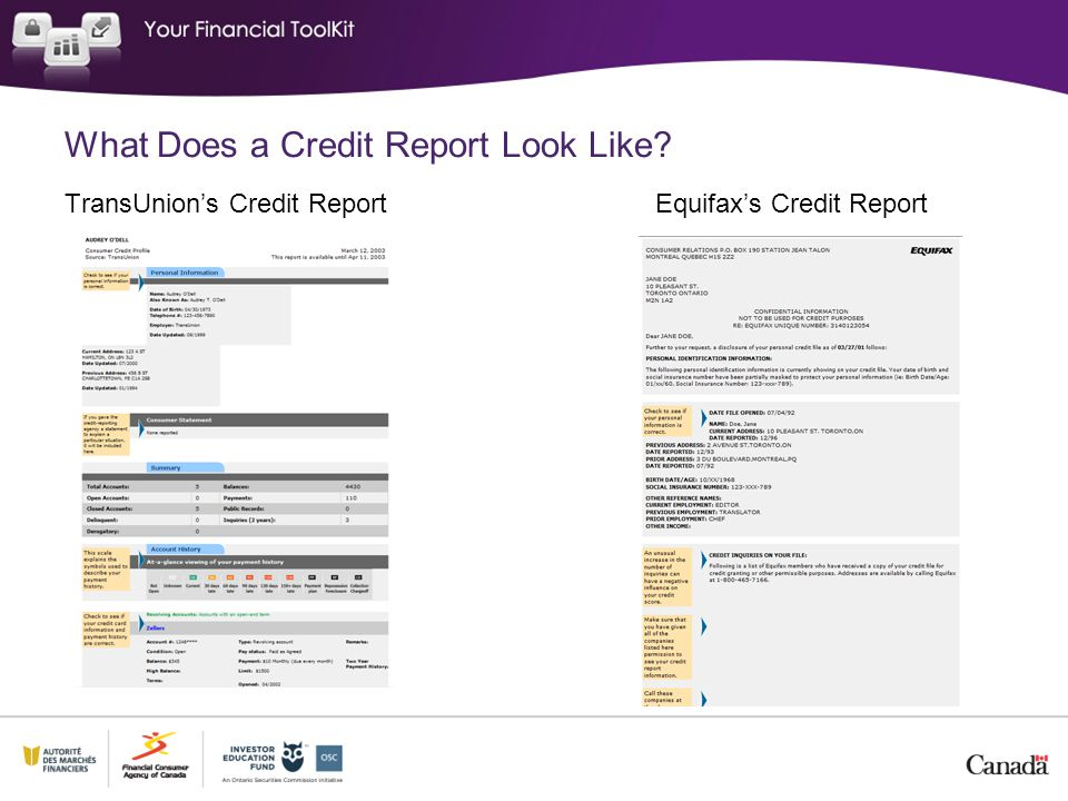 What Does a Credit Report Look Like
