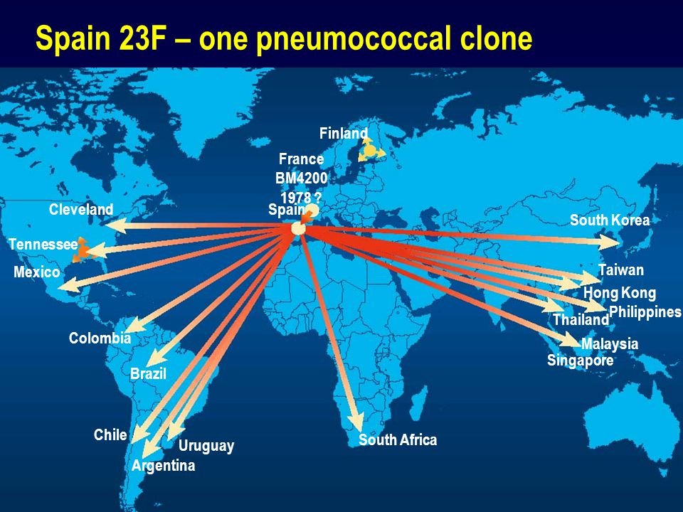 Spain 23F – one pneumococcal clone