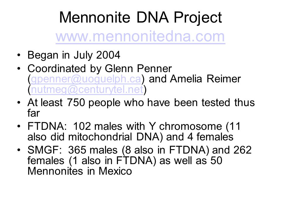 Mennonite DNA Project www.mennonitedna.com