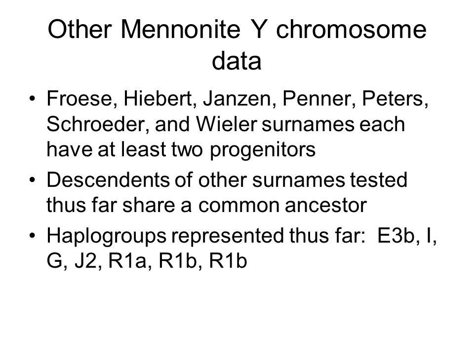 Other Mennonite Y chromosome data