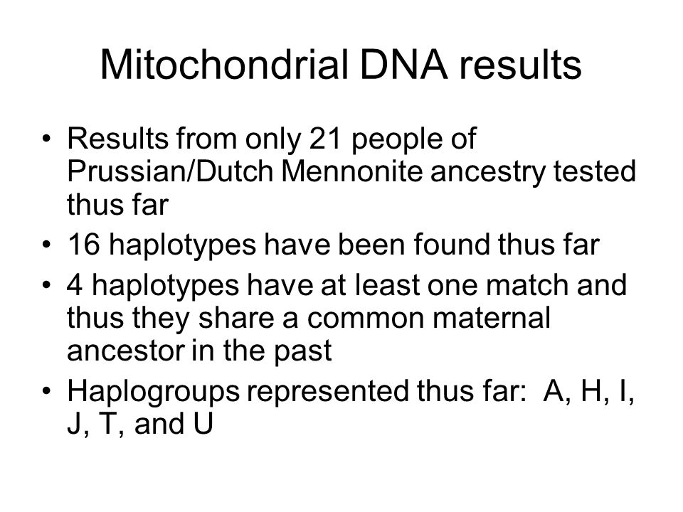 Mitochondrial DNA results