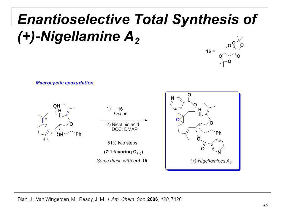 Enantioselective Total Synthesis of (+)-Nigellamine A2