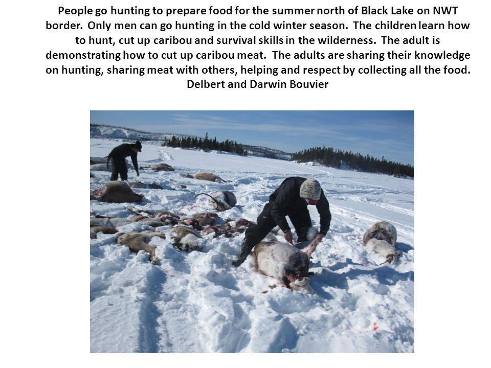 People go hunting to prepare food for the summer north of Black Lake on NWT border.