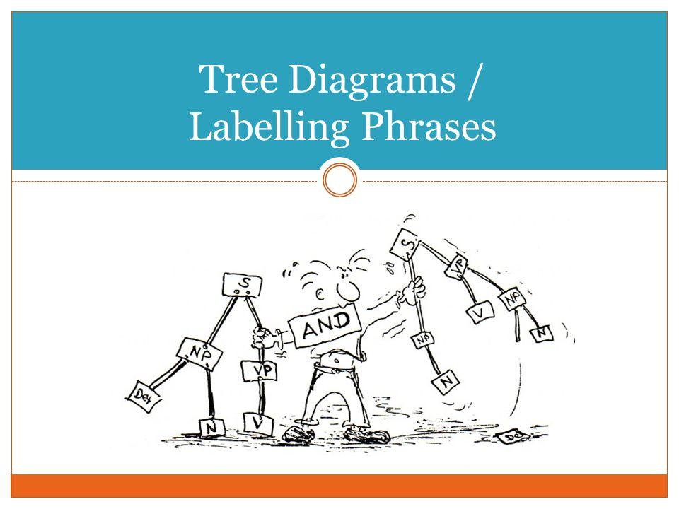 Tree Diagrams / Labelling Phrases