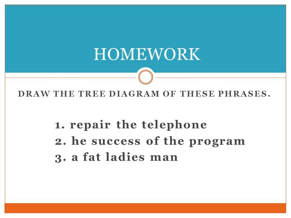 HOMEWORK 1. repair the telephone 2. he success of the program