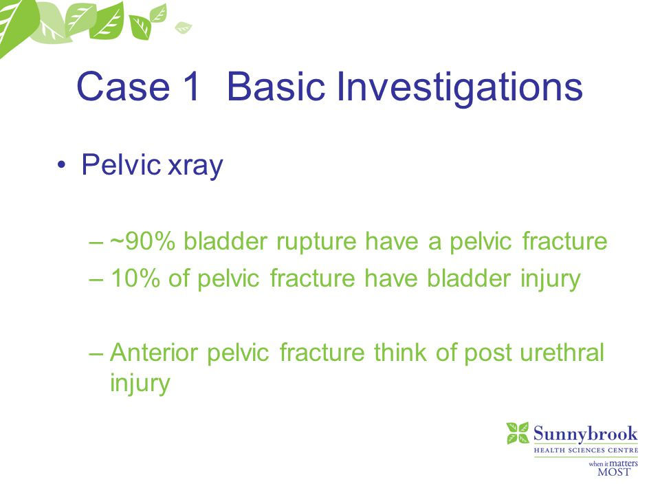 Case 1 Basic Investigations