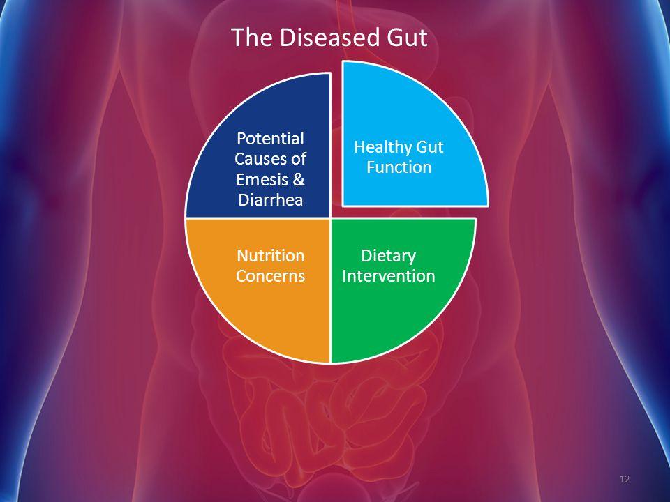 Potential Causes of Emesis & Diarrhea
