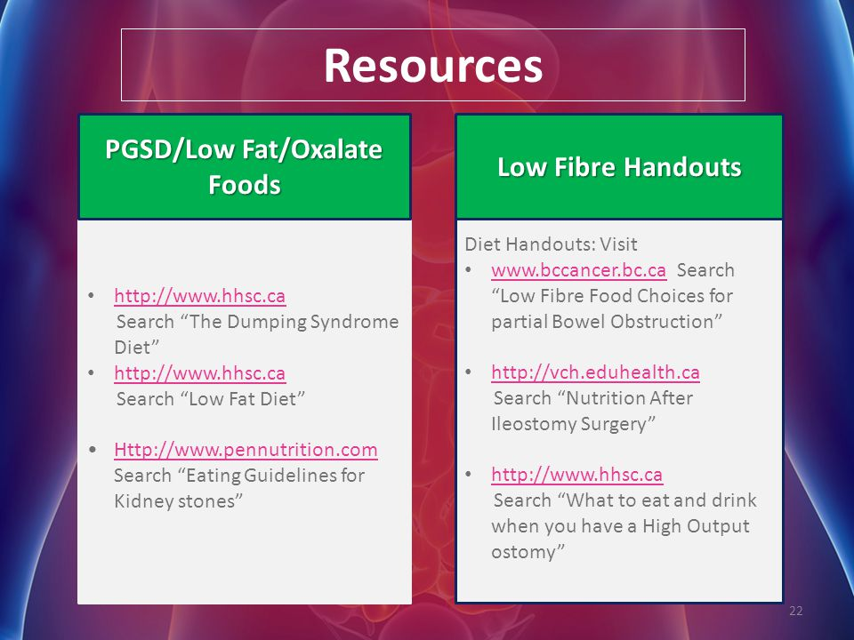 PGSD/Low Fat/Oxalate Foods