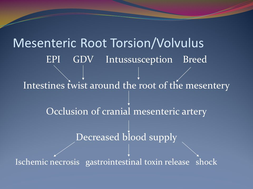 Mesenteric Root Torsion/Volvulus