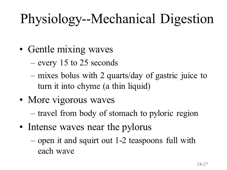 Physiology--Mechanical Digestion