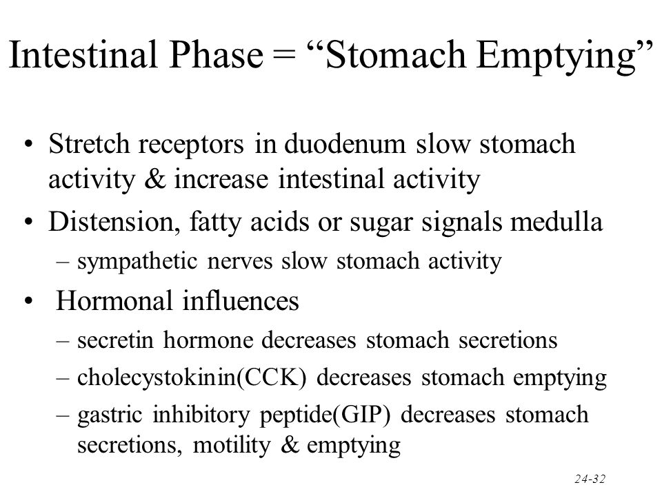 Intestinal Phase = Stomach Emptying