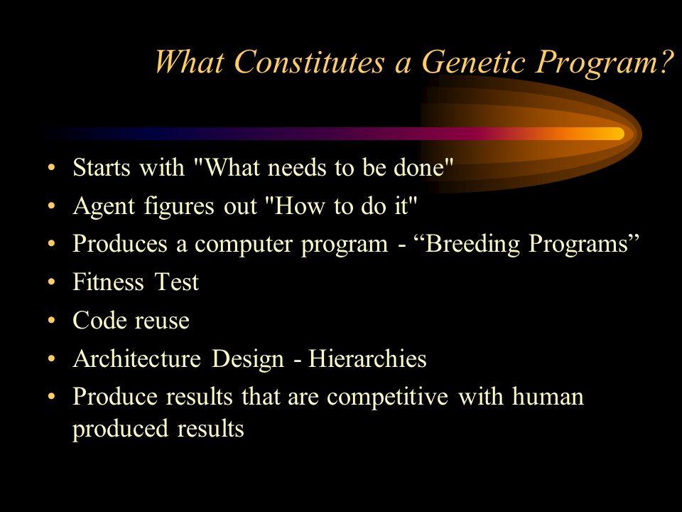What Constitutes a Genetic Program
