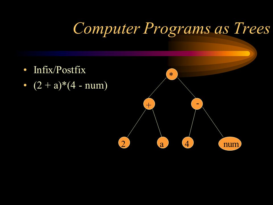 Computer Programs as Trees
