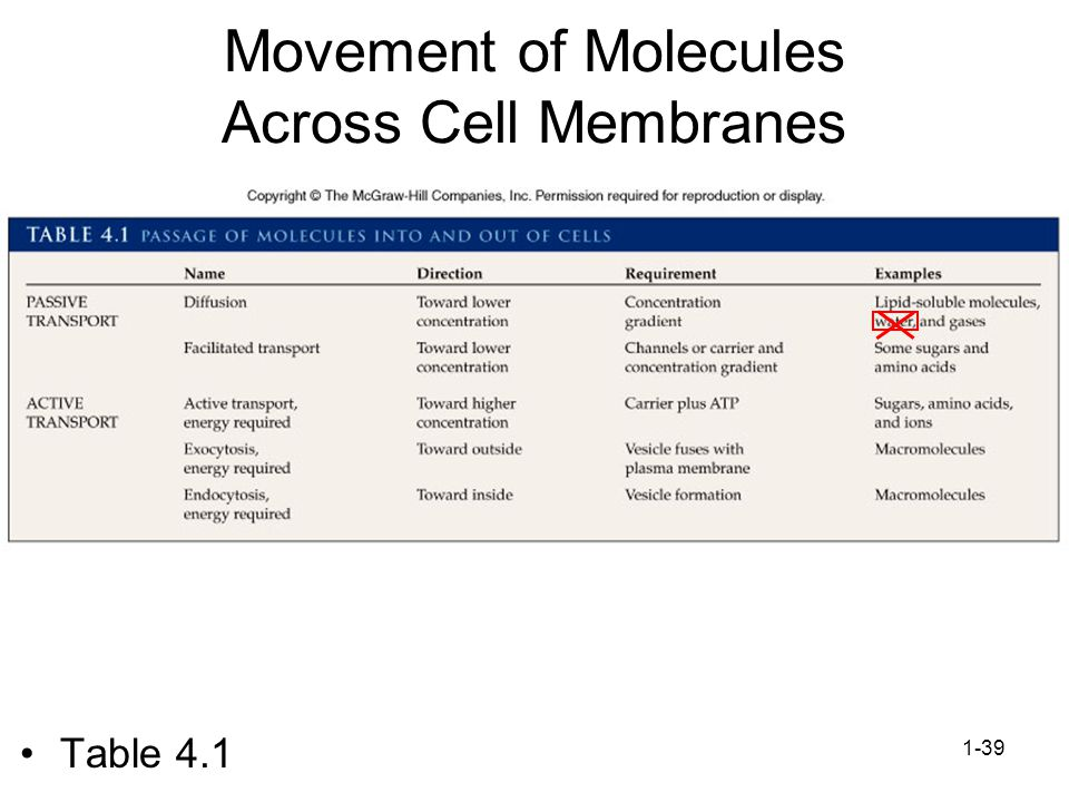 Movement of Molecules Across Cell Membranes