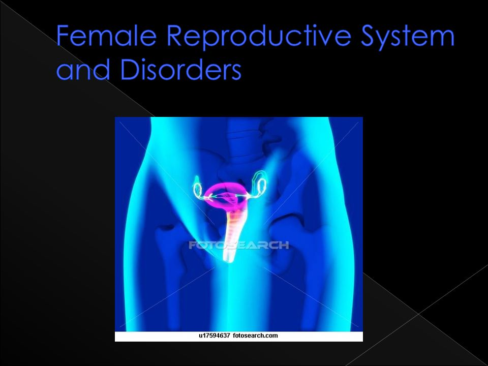 Female Reproductive System and Disorders