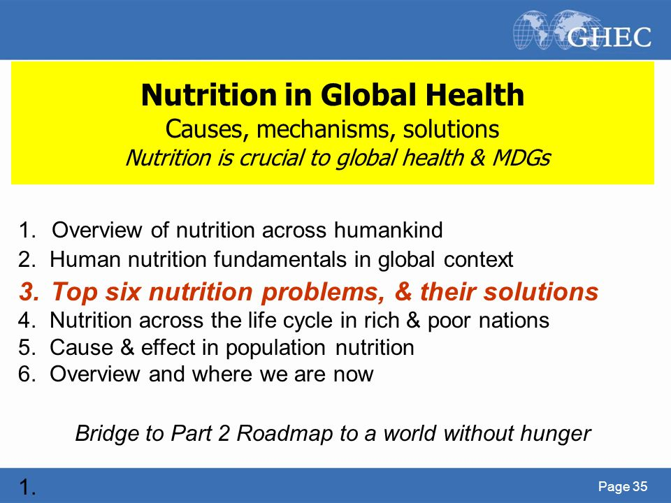 Bridge to Part 2 Roadmap to a world without hunger