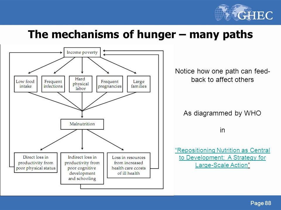 The mechanisms of hunger – many paths