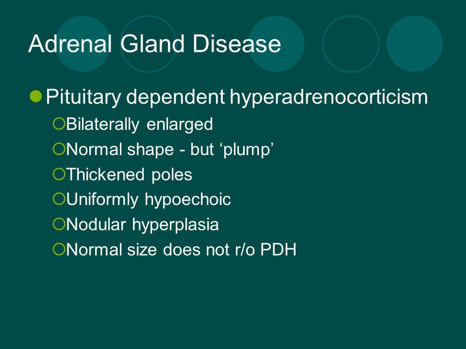 Adrenal Gland Disease Pituitary dependent hyperadrenocorticism