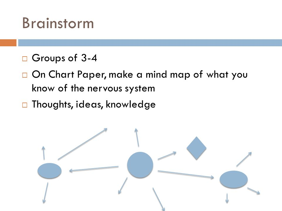 Brainstorm Groups of 3-4. On Chart Paper, make a mind map of what you know of the nervous system.
