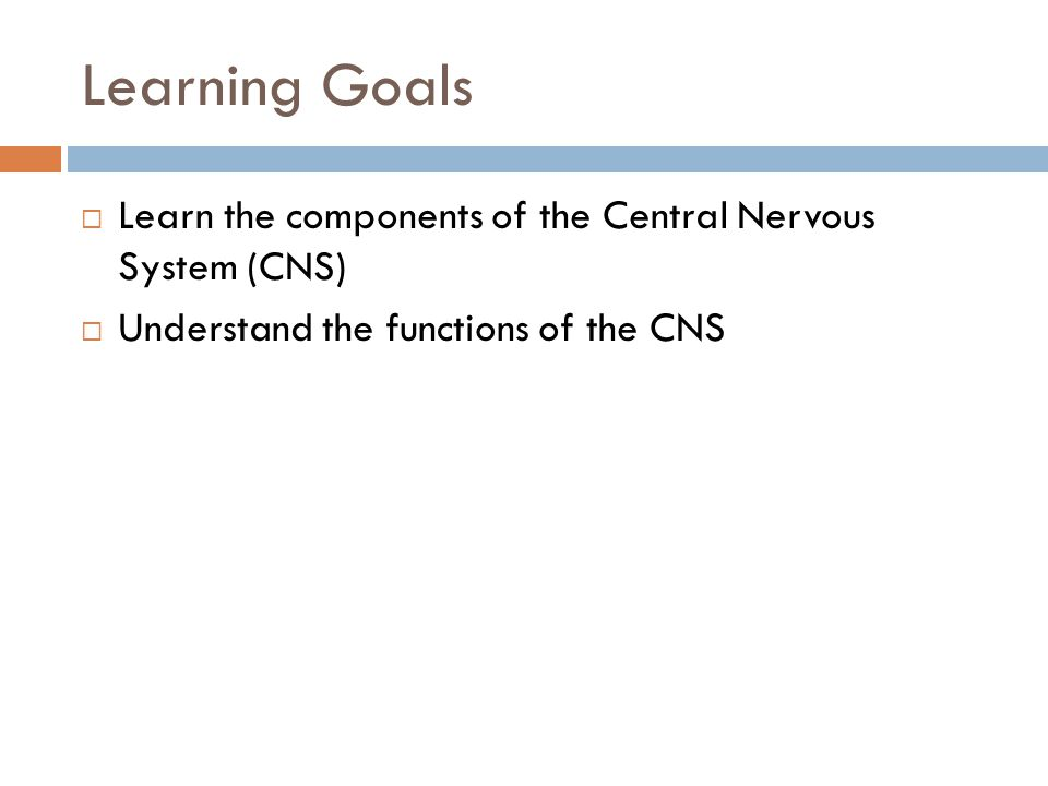 Learning Goals Learn the components of the Central Nervous System (CNS) Understand the functions of the CNS.