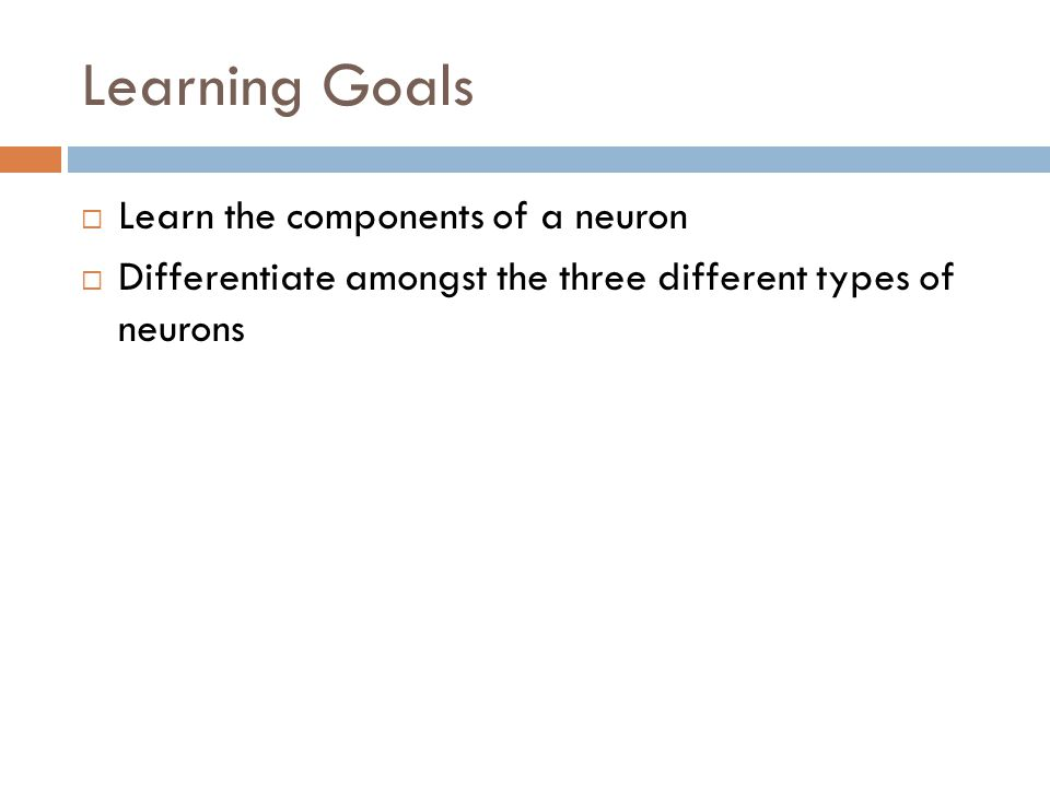 Learning Goals Learn the components of a neuron