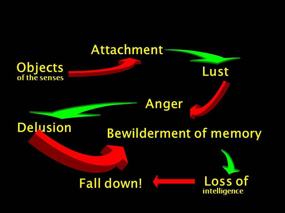 Bewilderment of memory