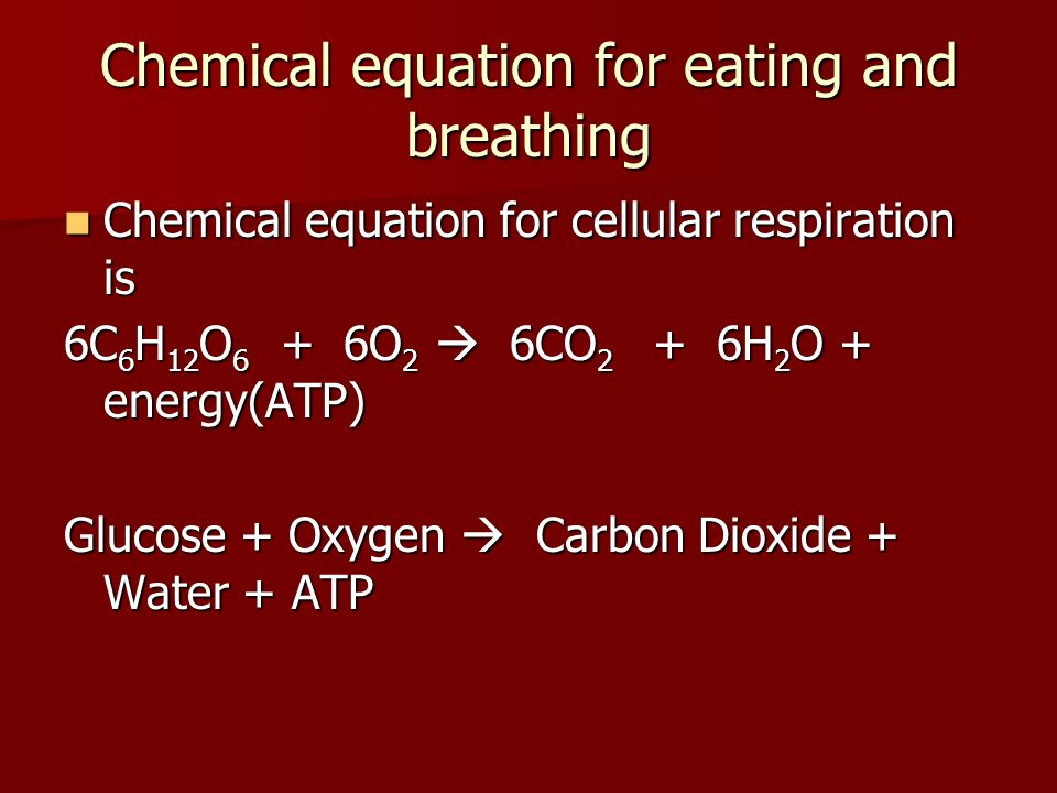 Chemical equation for eating and breathing