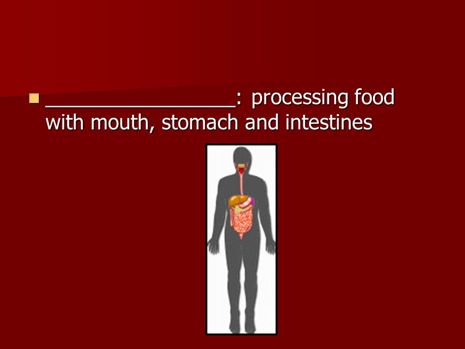 _________________: processing food with mouth, stomach and intestines