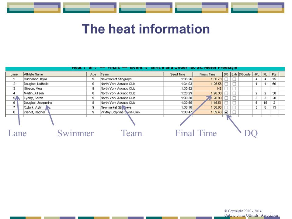 The heat information Lane Swimmer Team Final Time DQ