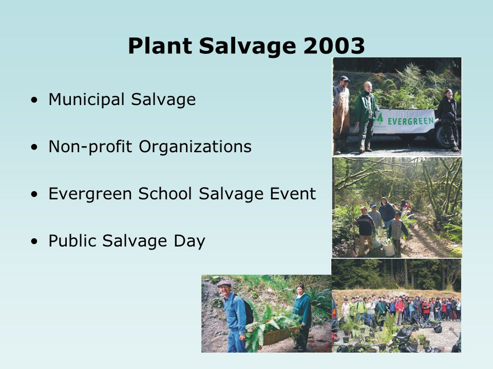 Plant Salvage 2003 Municipal Salvage Non-profit Organizations