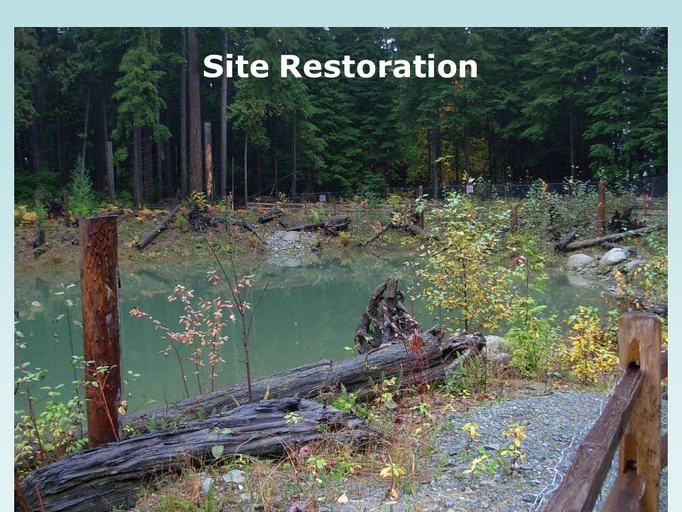 Site Restoration