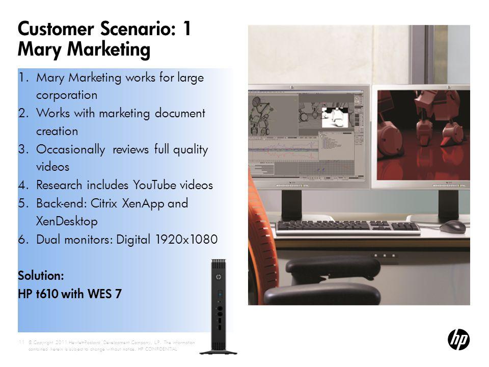 Customer Scenario: 1 Mary Marketing