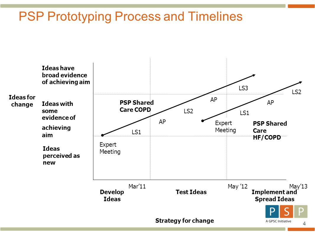 PSP Prototyping Process and Timelines