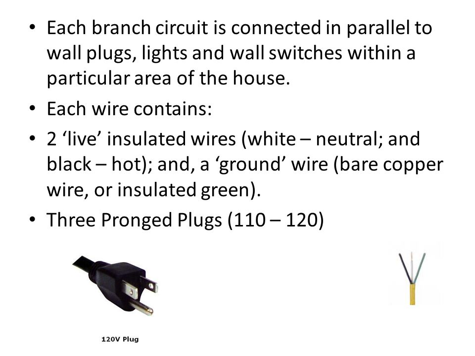 Each branch circuit is connected in parallel to wall plugs, lights and wall switches within a particular area of the house.