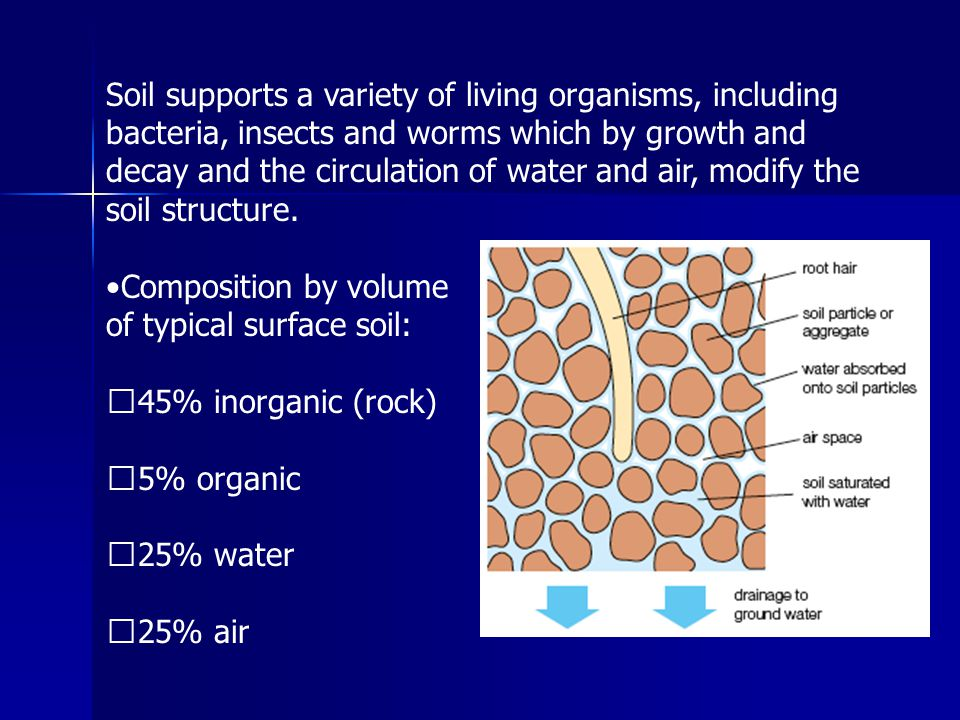 Soil supports a variety of living organisms, including bacteria, insects and worms which by growth and decay and the circulation of water and air, modify the soil structure.