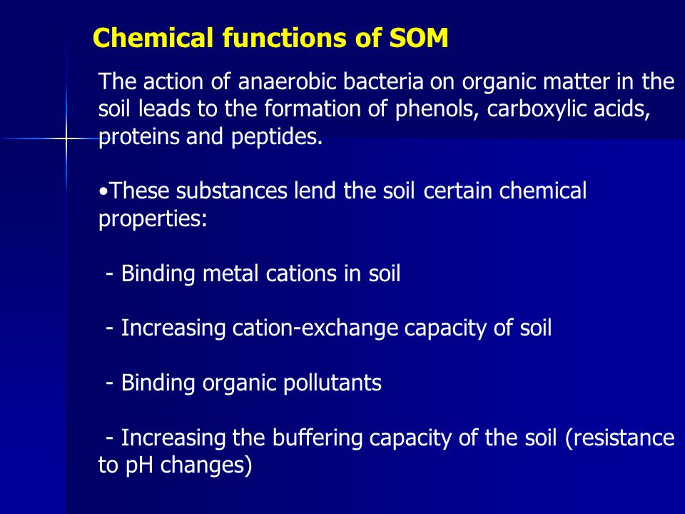 Chemical functions of SOM