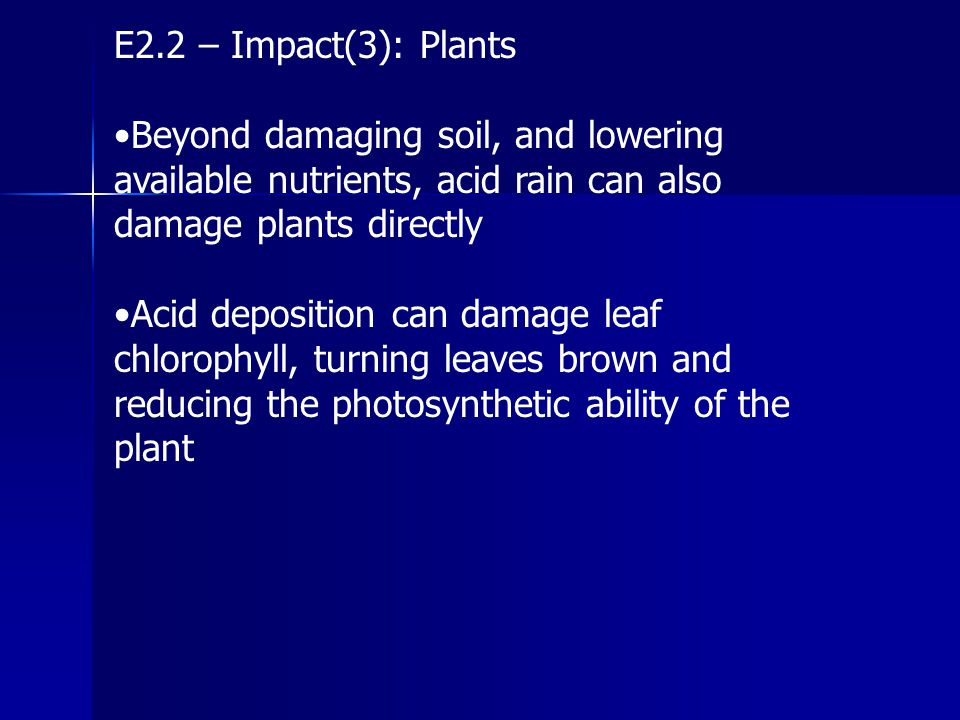 E2.2 – Impact(3): Plants •Beyond damaging soil, and lowering available nutrients, acid rain can also damage plants directly.