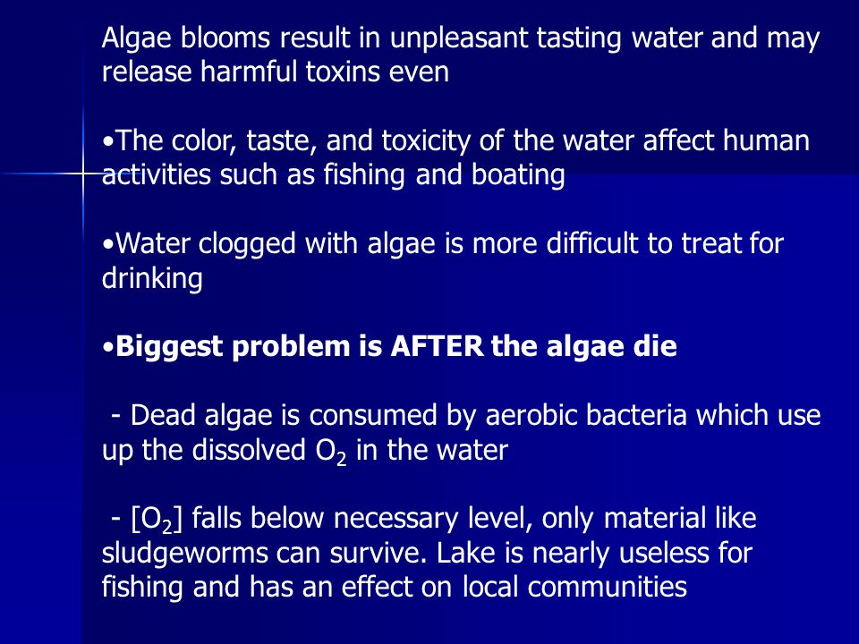 Algae blooms result in unpleasant tasting water and may release harmful toxins even