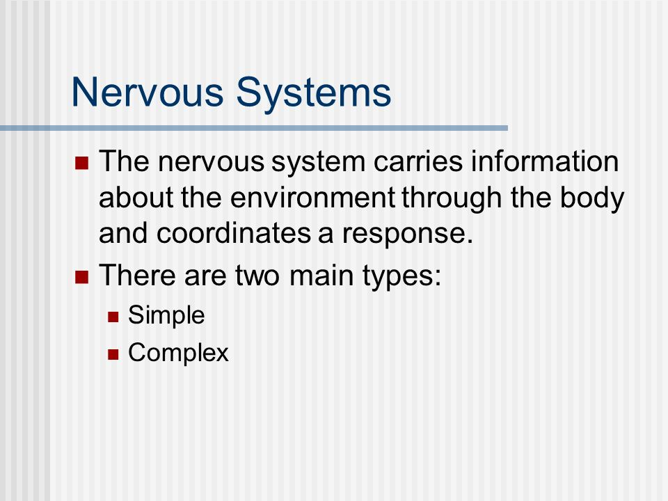 Nervous Systems The nervous system carries information about the environment through the body and coordinates a response.