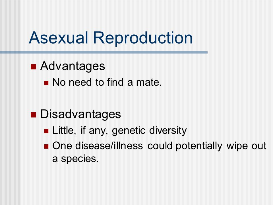 Asexual Reproduction Advantages Disadvantages No need to find a mate.